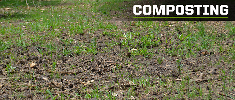 composting with mulch chips