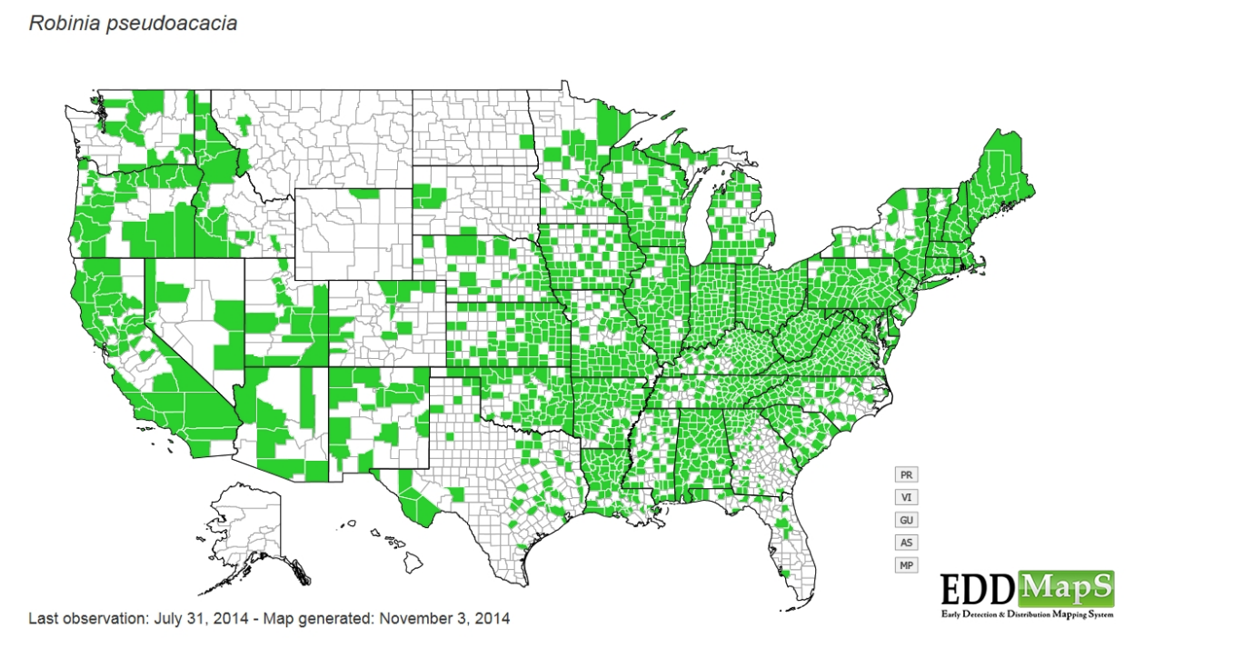 Map of distribution of Black Locust