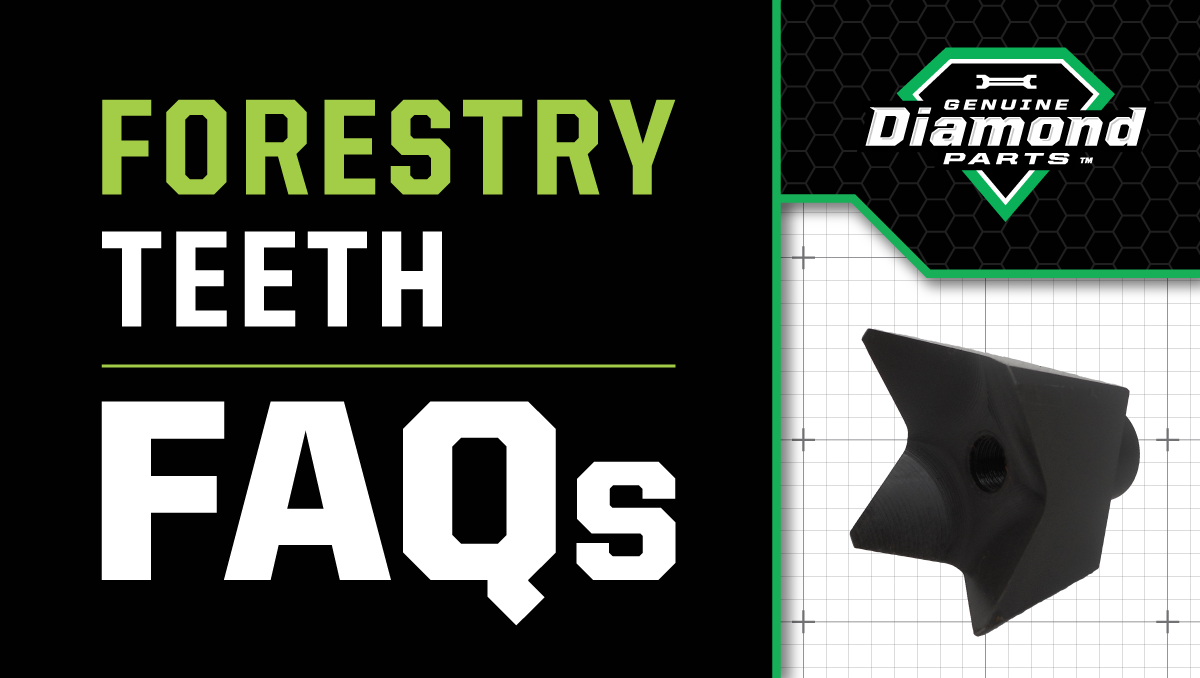 forestry-teeth-maintenance-faqs_banner_v2_@1200x678.png