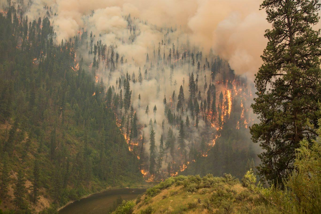 Photo Courtesy of http://boisestatepublicradio.org/post/idaho-congressman-reintroduces-bill-end-forest-service-policy-fire-borrowing
