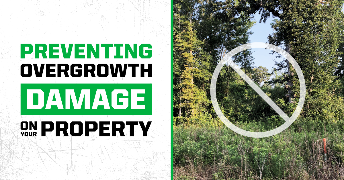 Preventing Overgrowth Damage on your Property